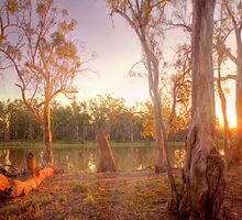 River Murray Sunset II - Renmark, South Australia by Mark Richards