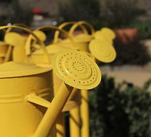 Yellow Watering Cans by JoelCollins