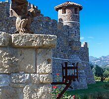 Castello di Amorosa, Napa Valley, California by Brendon Perkins