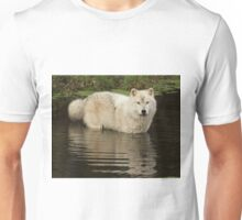 Autumn reflection Unisex T-Shirt