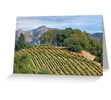 Private Hilltop Vineyard, Sonoma County, California Greeting Card