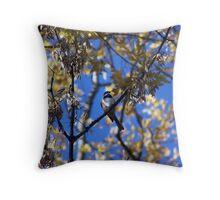 Bird Collection 001 Throw Pillow