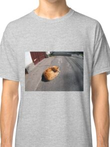 Wide angle view from the perspective distortion on the homeless cat Classic T-Shirt
