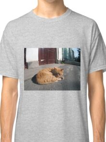 Perspective distortion view on the lonely and homeless cat Classic T-Shirt