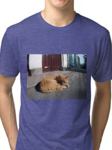 Perspective distortion view on the lonely and homeless cat Tri-blend T-Shirt