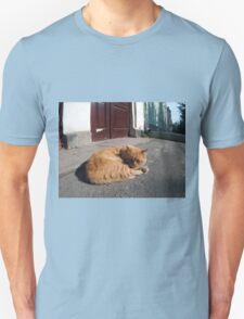 Perspective distortion view on the lonely and homeless cat T-Shirt