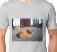 Perspective distortion view on the lonely and homeless cat Unisex T-Shirt