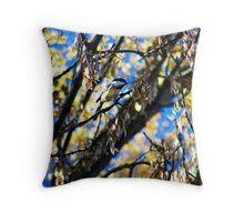 Bird Collection 002 Throw Pillow