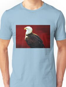 Tee:  Bald Eagle Unisex T-Shirt