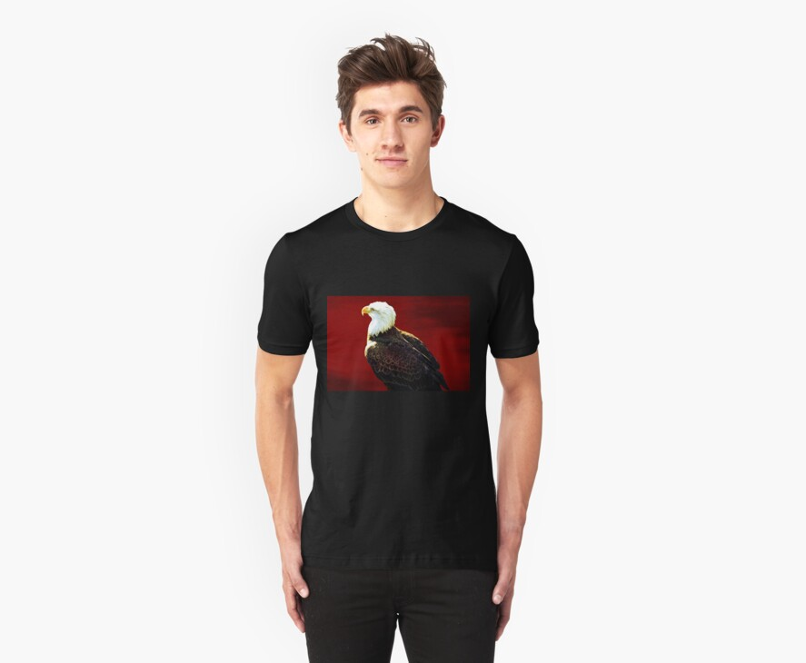 Tee:  Bald Eagle by AuntDot