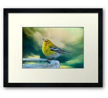 Sweet Little Warbler Framed Print