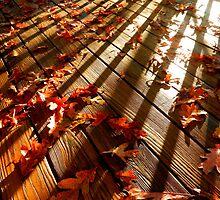 Kiss Me Autumn by SZapor