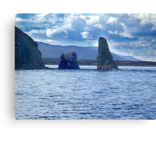 Old Scot Rock Canvas Print