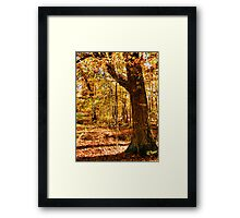 """Color Me Fall, 1""... prints and products Framed Print"