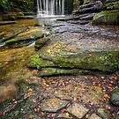 Woodland Waterfall by Adrian Evans
