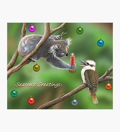 bush christmas Photographic Print