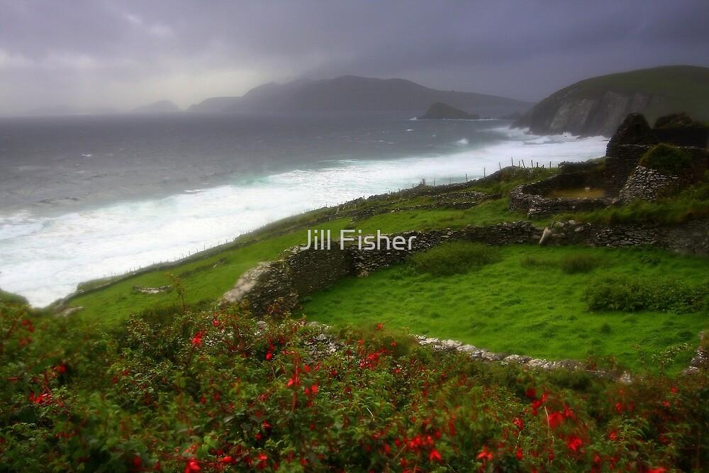 The Irish Coast by Jill Fisher