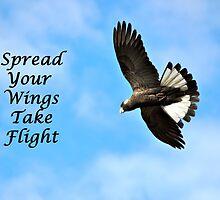 Take Flight by Coralie Plozza
