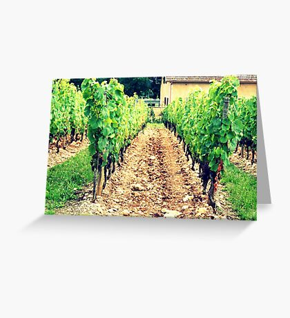 A French Vineyard Greeting Card