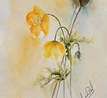 Poppies & Bud by LuciaM