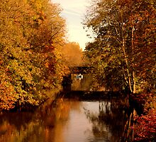 Autumn on the Avon by Clive