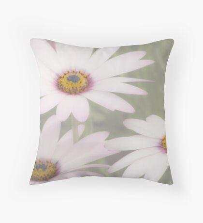 Daisies Three  Throw Pillow