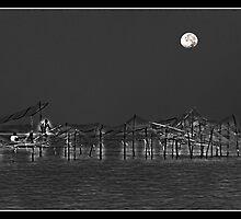 The Soothing Moon by J.N. SINGH