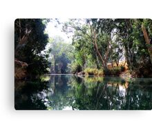 Jordan river #1 Canvas Print