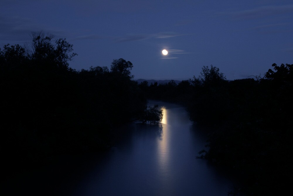 I Have The Blues ~ Full Moon ~ by Charles & Patricia   Harkins ~ Picture Oregon