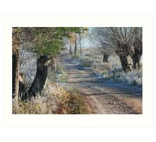 First frost in rural pathway Art Print