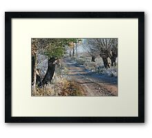 First frost in rural pathway Framed Print