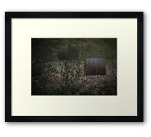 The Zoom Test Framed Print