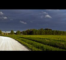 Road to the Rain by tutulele