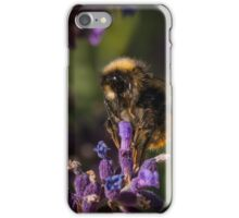 Lavender Bee iPhone Case/Skin