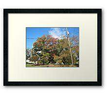 Fall 2011, Sky Blue Framed Print