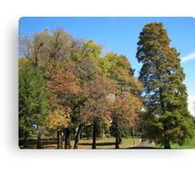 Fall 2011, All Together Canvas Print