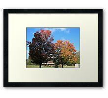 Fall 2011, Shadows 2 Framed Print