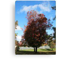 Fall 2011, Shadows Canvas Print