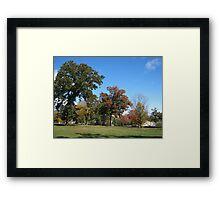 Fall 2011, Wide Open Framed Print