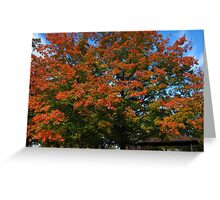 Fall 2011, In & Out Greeting Card