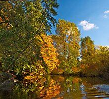 AUTUMN RIVER by Sandy Stewart