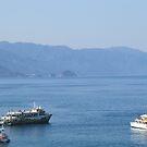 Starting a tour at the Banderas Bay/Puerto Vallarta  IV by PtoVallartaMex