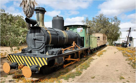 THE TRAIN - LOCOMOTIVE CLARA by Magaret Meintjes