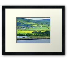 Green With A Patch Of Yellow Framed Print