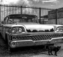 Ford -- 1959 Fairlane by njordphoto