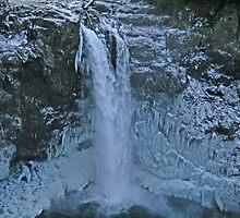 Snoqualmie Falls by Debbie Stika
