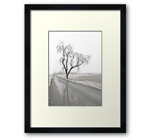 Ice Covered Tree Framed Print