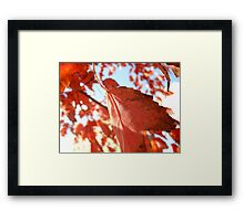 At My Breaking Point ....... Framed Print