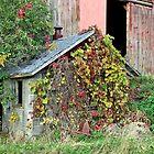 Old Milk House by Ella Blame