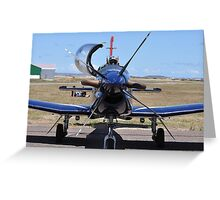 Silver Falcons Greeting Card